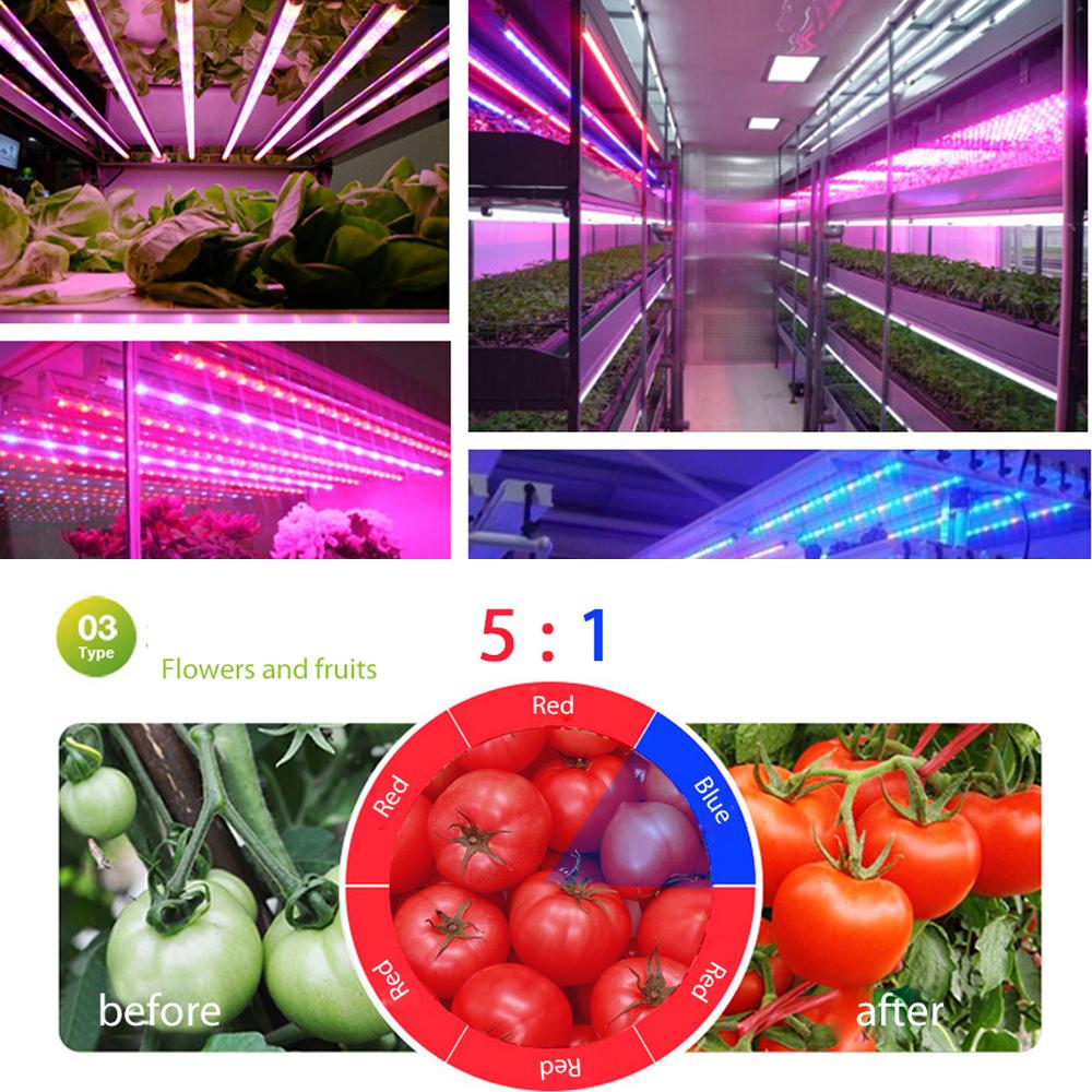 LED_Strip_16.4Ft_5M_300LEDs_LED_GROW_LIGHTS_8
