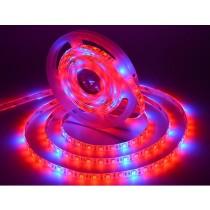 Grow Light 5050 12V LED Strip Plant Growth 16.4Ft 5M 300LEDs Full Spectrum
